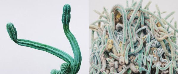 painted cacti 'TOUCH' by Kwangho Lee