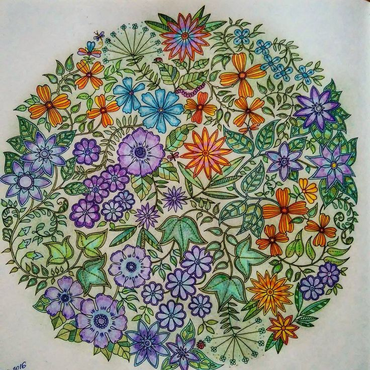Johanna Basford Dandelion Coloring Books Colouring Secret Gardens Mandala