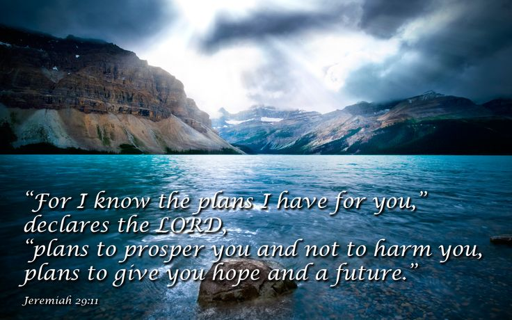 """jeremiah 29 11 