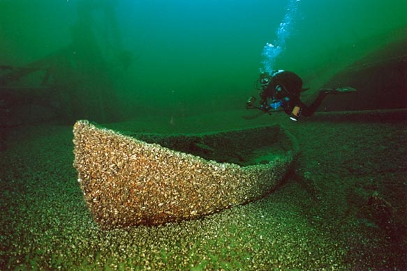 Seaport Shipwreck archaeological site