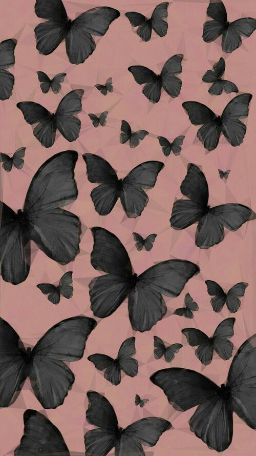 Black Butterflies Jcm These Black Wallpaper On Your Phone Or Tablet Will Be Very Ni Butterfly Wallpaper Iphone Black Wallpaper Iphone Background Wallpaper Black wallpaper butterfly hd