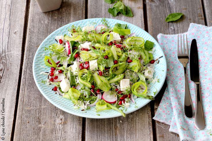 Salade printanière de riz sauvage aux asperges et pousses de cresson #rizsauvage #recette #grainesgermées #sproutedseeds #germline #germination #grenade #cresson #asperges