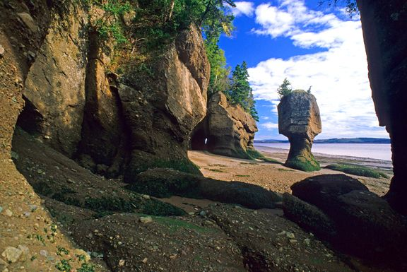 Fundy National Park, Bay of Findy at low tide