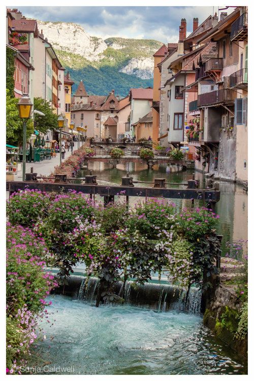 Annecy, France - canal bridges waterfall architecture French Alps flowers mountain water pastel buildings 8x12+ Original Fine Art Photograph
