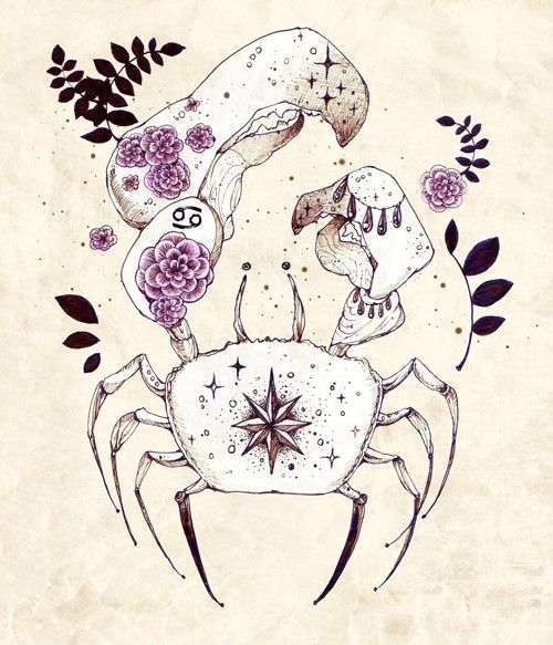 74 Best Images About Zodiac Tattoo Designs On Pinterest