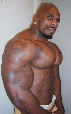 african muscular aggressive gay porn