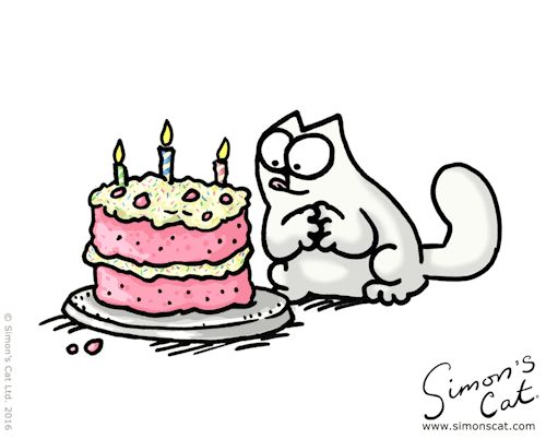 A special day today! Happy Birthday Simon's Cat!