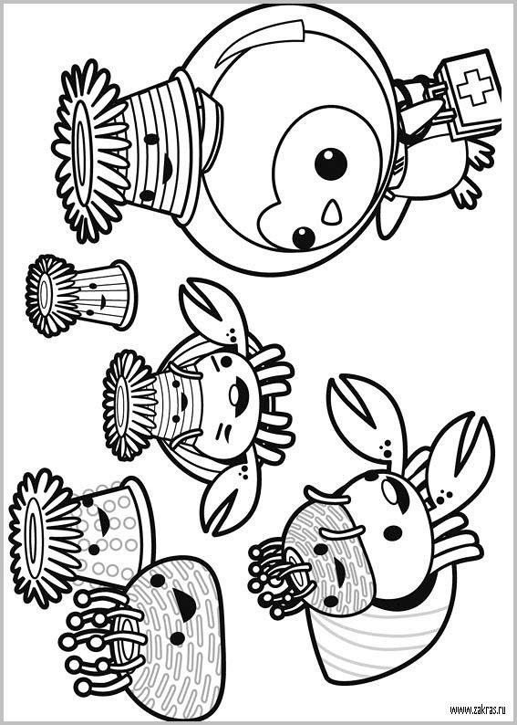 29 besten coloriage les octonauts Bilder auf Pinterest | Malvorlagen ...