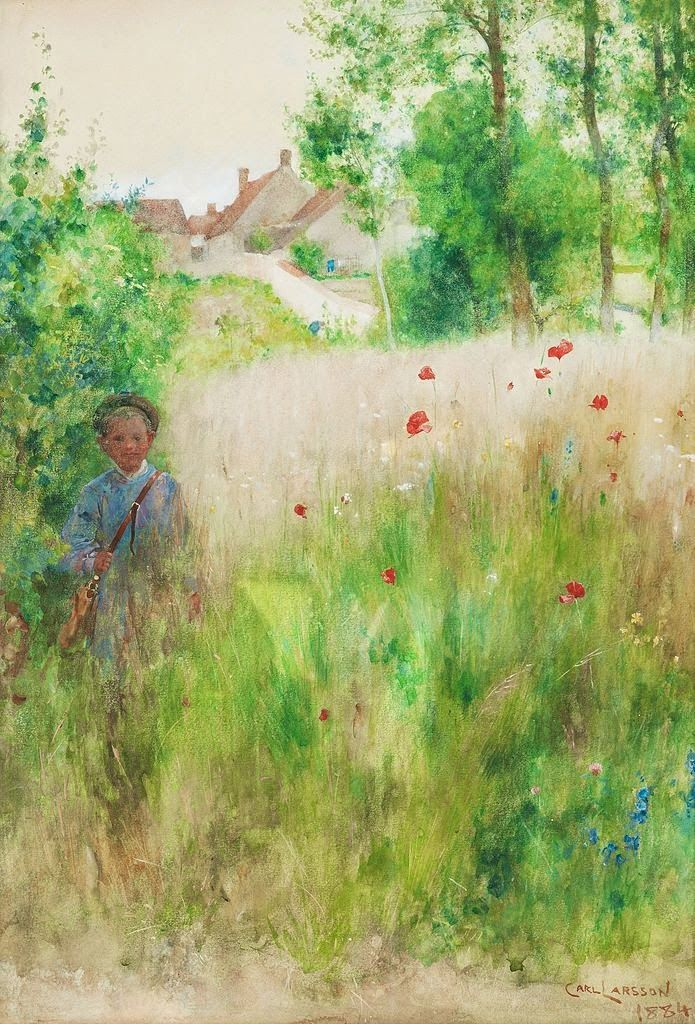 1884 Vallmor/ Poppies  Carl Larsson