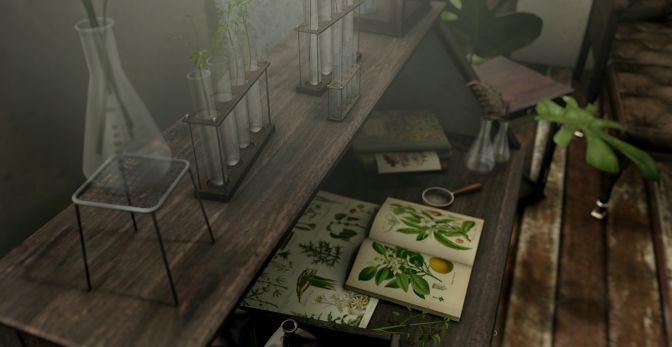 blog nomad vintage botanist1