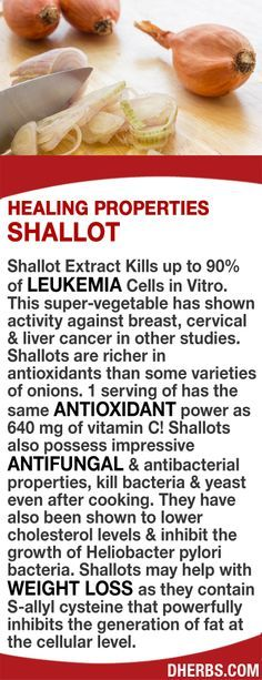 Shallot Extract kills up to 90% of Leukemia Cells in Vitro & have shown activity against breast, cervical & liver cancer. Richer in antioxidants than some onions & same power as 640 mg of vitamin C! Shallots possess antifungal & antibacterial properties,  http://womensbust.com/natural-ways-to-increase-breast-size/exercises-to-increase-breast-size-fast/