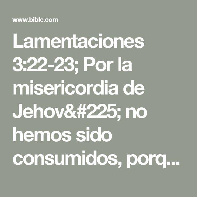 Lamentaciones 3:22-23; Por la misericordia de Jehová no hemos sido consumidos, porque nunca decayeron sus misericordias.  Nuevas son cada mañana; grande es tu fidelidad.