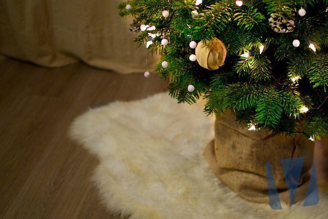 In sommige gevallen gaan mensen naar het bos toe om een kerstboom te zoeken. Een kerstboom wordt dan met wortel en al uit de grond getrokken. De wortels zijn nog voorzien van potgrond. Een jute zak voor de kerstboom is in dit geval de oplossing.  Lees snel ons blogartikel van Jutezakkenshop.com: Waar kan ik jute zakken voor gebruiken?.