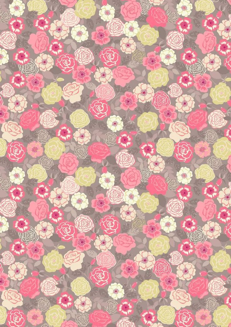 FLO9.2 - Pink And Yellow Wild Rose