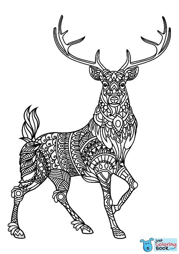 Reindeer Coloring Pages Pyro Pics Animal Coloring Pages Regarding Reindeer Deer Coloring Pag Deer Coloring Pages Animal Coloring Books Mandala Coloring Pages