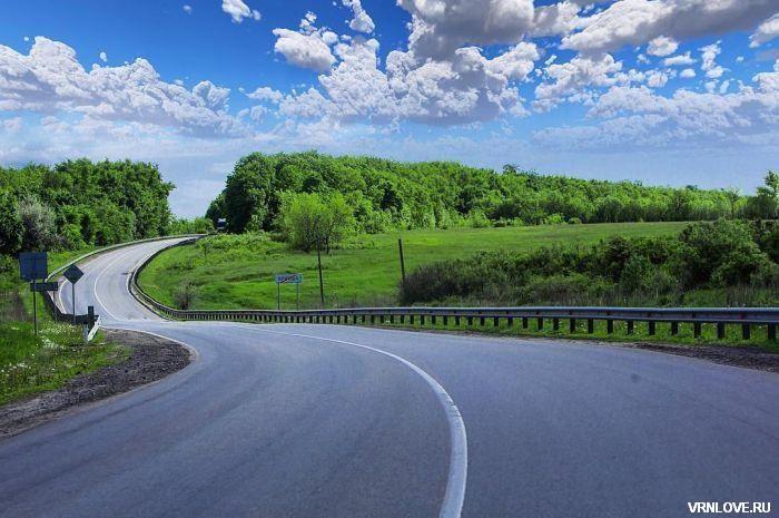 Фотографии дороги и моста около Криуши в Воронежской области
