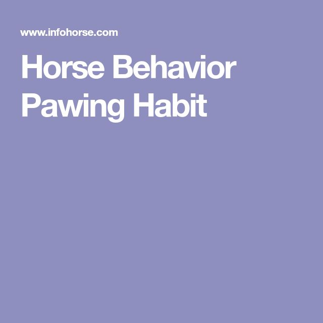 Horse Behavior Pawing Habit