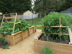 The Garden - Raised Beds | Flickr - Photo Sharing!