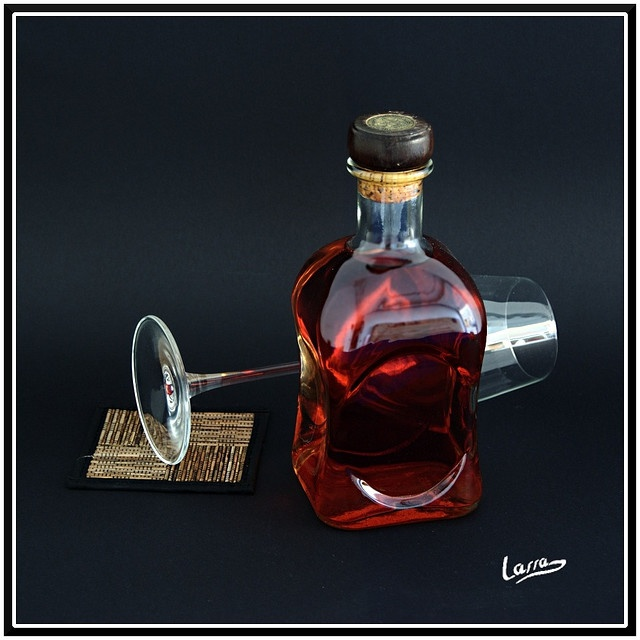 Patxaran. Navarre, Spain made with sloe berries, coffee, vanilla, anisette liqueur... typically home brews. Make one day?