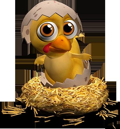 http://bit.ly/Llf5VW #Farmerama #chicken #cute #baby #animal