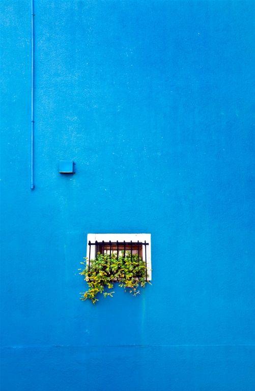 Blue /