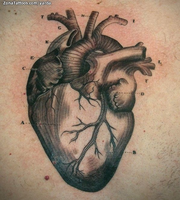 Tattoo Quotes Gold Coast: 61 Best Images About Movimiento On Pinterest