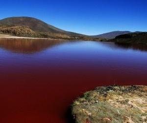 Laguna Roja. Iquique