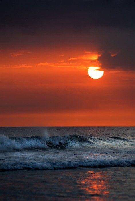 natuur   zee   zon