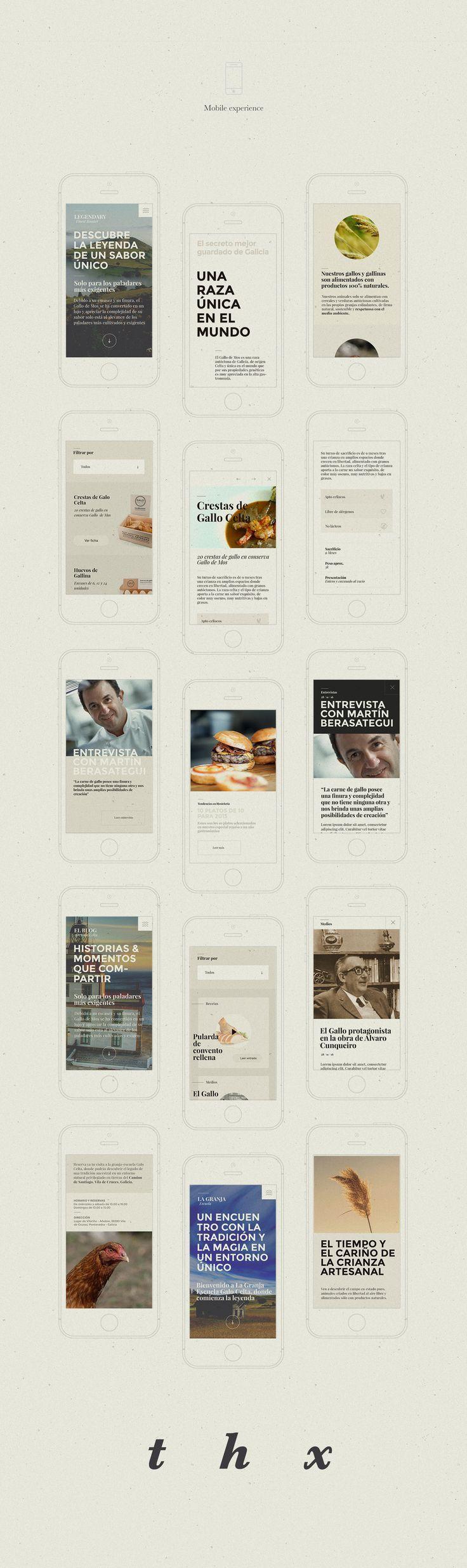 Web Design for Galo Celta PPT