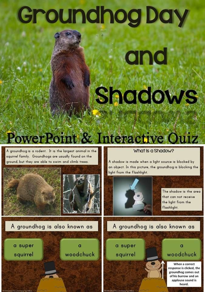 "This PowerPoint presentation includes information on groundhogs, Groundhog Day, and shadows. It uses simple terms and real, full-color photographs.   It includes an interactive quiz at the end to check student understanding. When a correct answer is clicked, the groundhog comes up out of his burrow and applause is heard. When an incorrect answer is clicked, an unhappy face with an ""Oops try again"" message is displayed."