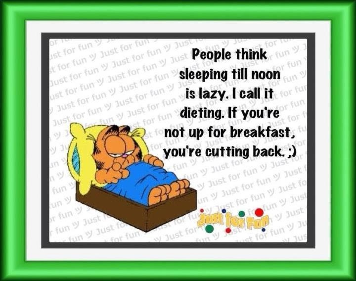 1518 best Garfield images on Pinterest | Funniest pictures, Garfield pictures and Hilarious quotes