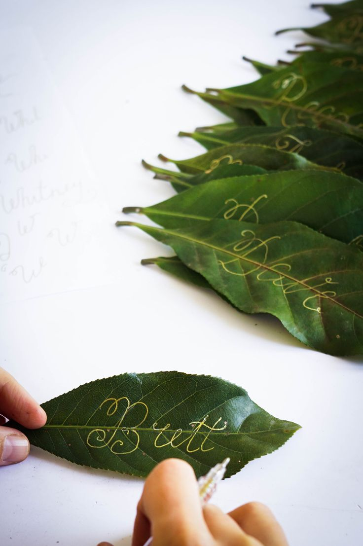 Be swept into the tropical leafy green trend this summer! Get creative with these elegant green leaves place settings! #HoiAnEventsWeddings