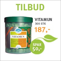 Vitamun - 300 stk.