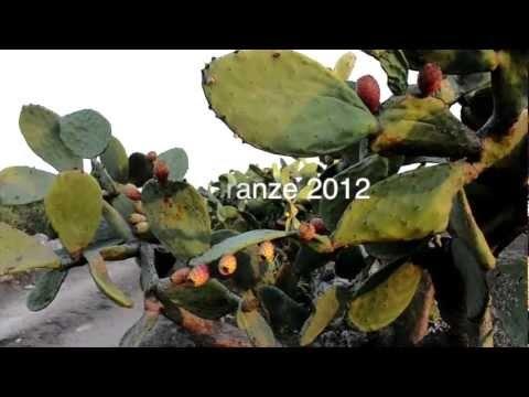 Il nostro #video di #Culturanze è anche su  #pinterest. #Vacanza in cambio di #cultura targata #Puglia ;)