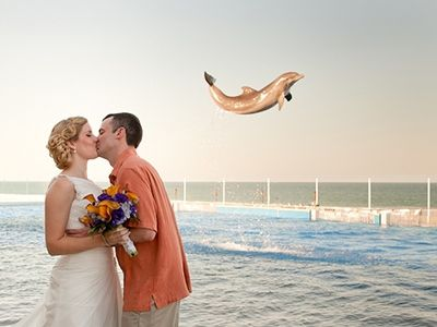 Welcome to the world of wedding photo bombs, where there's always one guest or wedding crasher who c