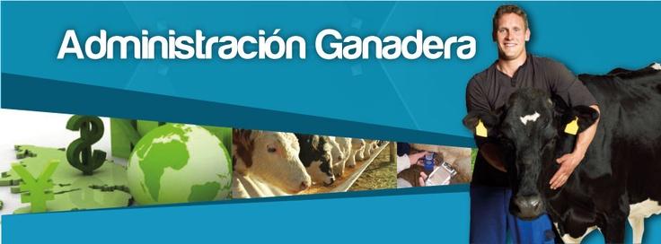 Estudia en Ciandco Administración Ganadera.