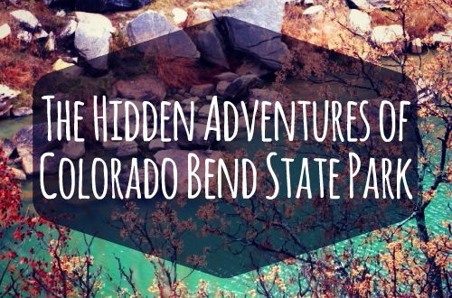 Scenic trails, frozen waterfalls, and wild caves! Read more about my first time spelunking and the hidden adventures I found in Colorado Bend State Texas State Park!