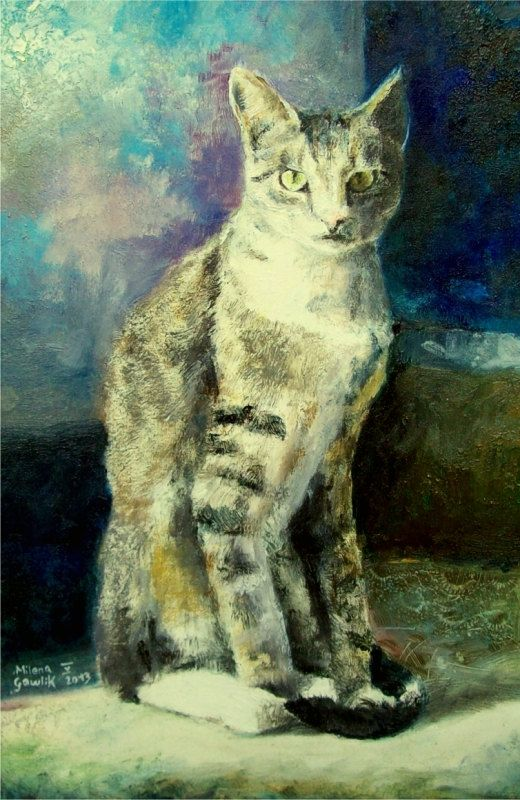 CAT in the sun- Fine Art GICLEE PRINT after an original painting by Milena Gawlik