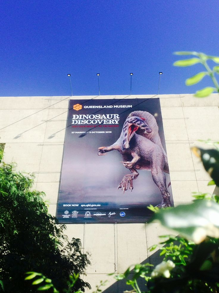 Spinosaurus says RAWRRRRRR! What do you think of our new Dinosaur Discovery: Lost Creatures of the Cretaceous museum banner?  Did you know, at an estimated maximum length of around 15 metres, Spinosaurus was one of the largest of all known theropods (meat eating dinosaurs). Be warned Brisbane, they're coming. #QMdinodisco 27 March - 5 October 2015, book now www.qm.qld.gov.au/dinosaur