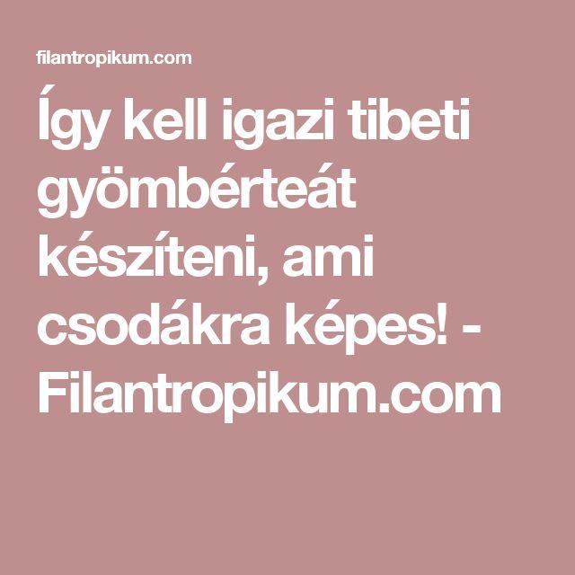 Így kell igazi tibeti gyömbérteát készíteni, ami csodákra képes! - Filantropikum.com