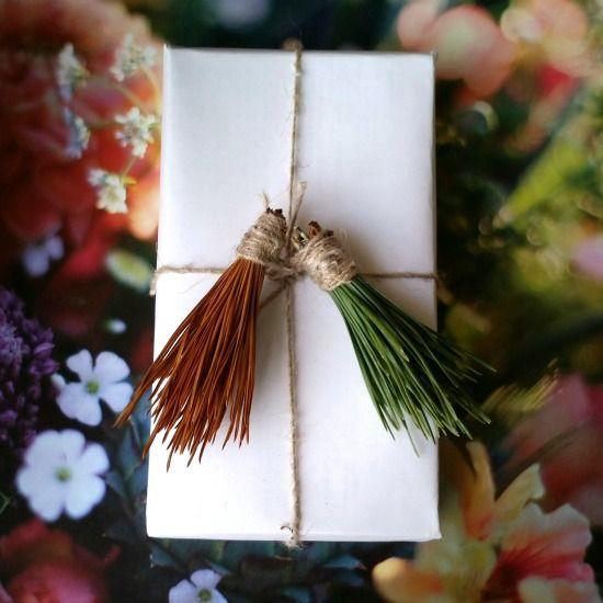 Pine Tassels