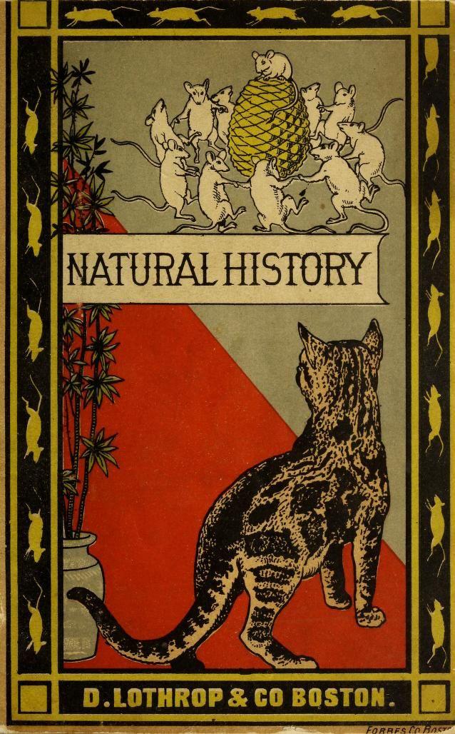 Book Of Natural History ~ 1880