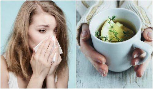Toma nota de las siguientes recetas para desintoxicar los riñones. Verás que son deliciosas y muy fáciles de incorporar a tu dieta.