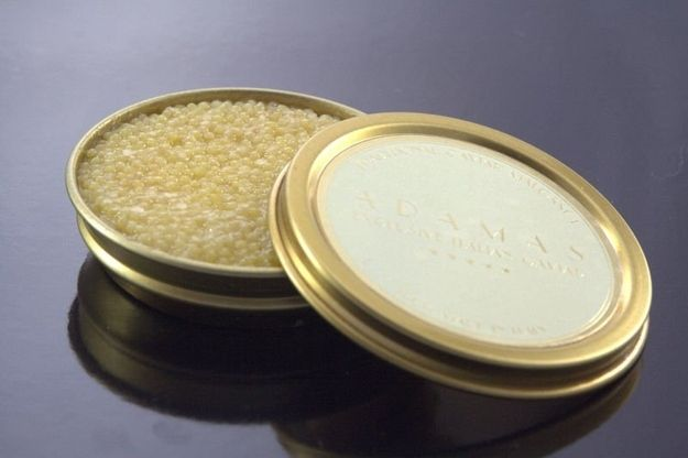 Price - $25,000 per kilo  Hailing from Iran, this rare Almas caviar is the most expensive in the world. It's also only sold at the Cavier House and Prunier in London. A one kilo 24 karat gold tin will set you back a tidy $25,000. But don't worry, for those of you who are conservative with your finances can pick up a smaller tin for a mere $1300.