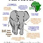 "This ""All About Book"" will be a fun addition to your classroom and lesson on the elephant. (African Animals Unit Study)  Your student/child will love to learn ""All About Elephants""!"