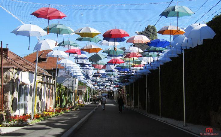 umbrella's street