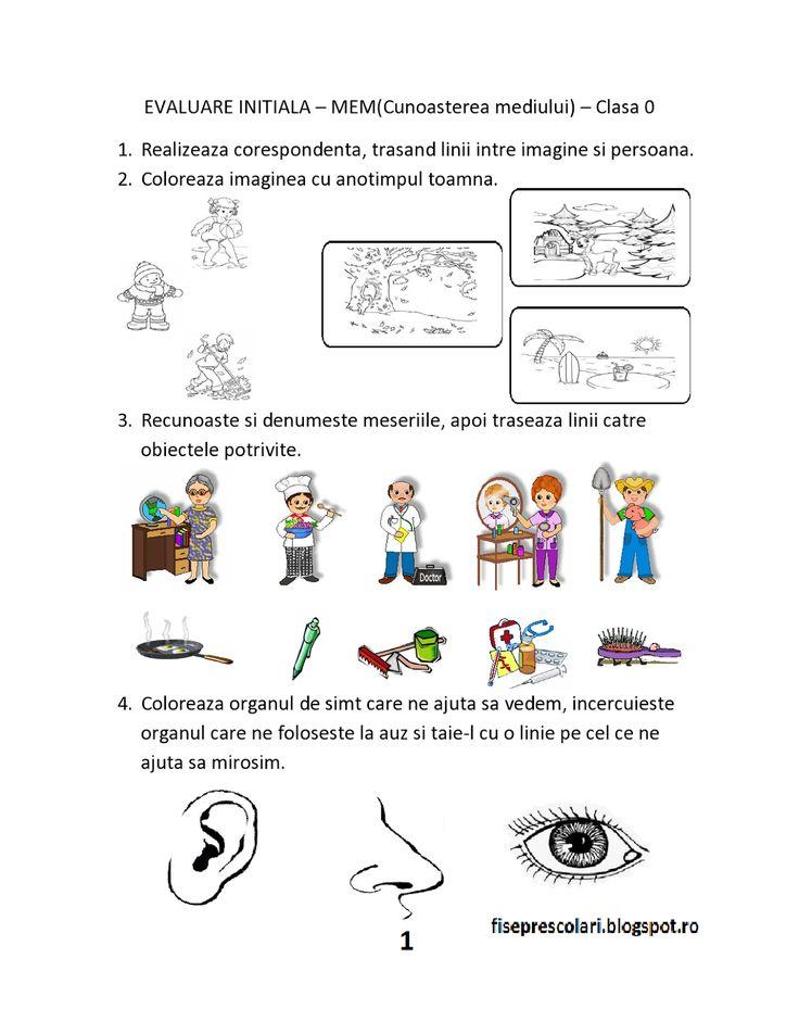 FISE de evaluare initiala - Clasa 0 - Pregatitoare MEM - Stiinte ale naturii…