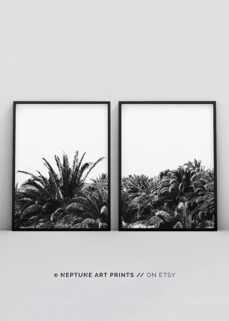 Palm Tree Print, Black and White Palm Trees, Tropical Wall Art, Californian Palm Tree Print, 2 Piece Modern Wall Prints, Instant Download    Printable art is an easy and affordable way to personalize your home or office. You can print from home, your loca