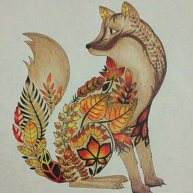 Secret Garden Coloring Book Fox