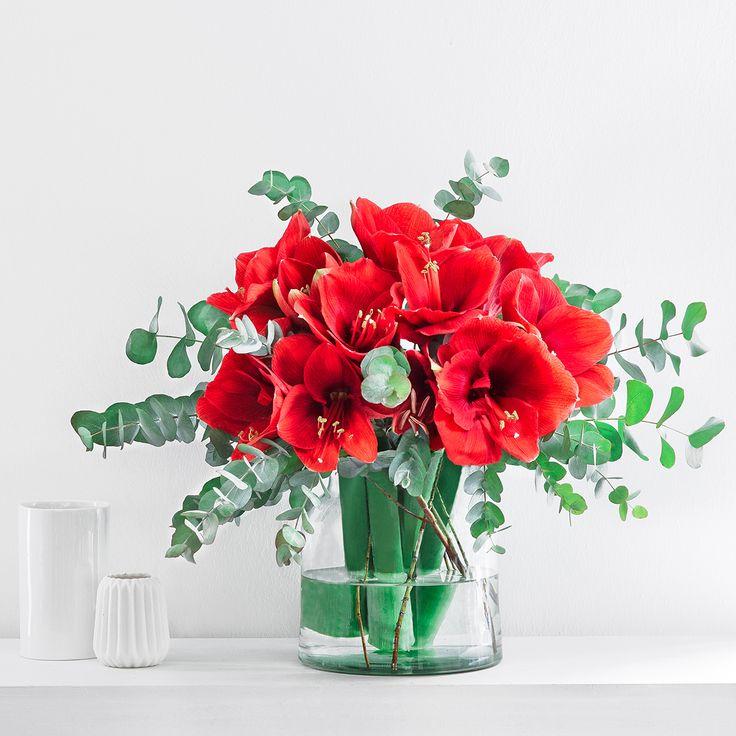 """Die """"SPECIAL SELECTION by CYNTHIA BARCOMI"""" von der erfolgreichen Backikone versetzt Sie sofort in winterliche Adventsstimmung. Das Bouquet könnt ihr versandkostenfrei bei uns bestellen."""